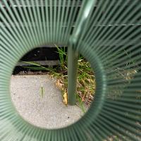 Zegelvlinderstraat | Rona Tammer