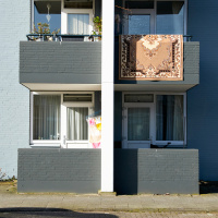 Dijkgraafslag | Elly Verkerk