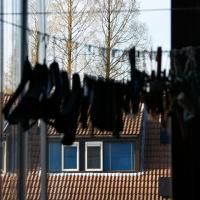 Gaarderslag | Elly Verkerk