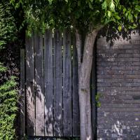 Livingstonehof | Lex Stoltenborgh