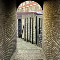 Vossiusstraat | Maaike Hoonhout