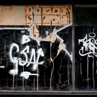 Fluwelensingel | Arthur van Lingen