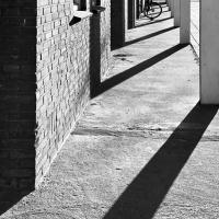 Gedenklaan | Maaike Hoonhout