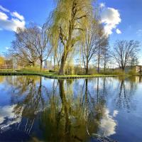 Willem Idenburgpad | Maaike Hoonhout