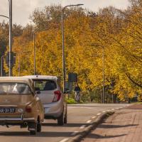 Rotterdamseweg | Marga Schaap