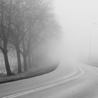 Rotterdamseweg | Freyja Borger