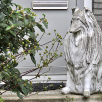 Gortmolenerf | Marian Bosch