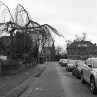 Prins Mauritsstraat | Nicole Jansen