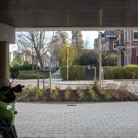 Tunnelhof   Michel Salters